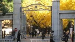 university of t